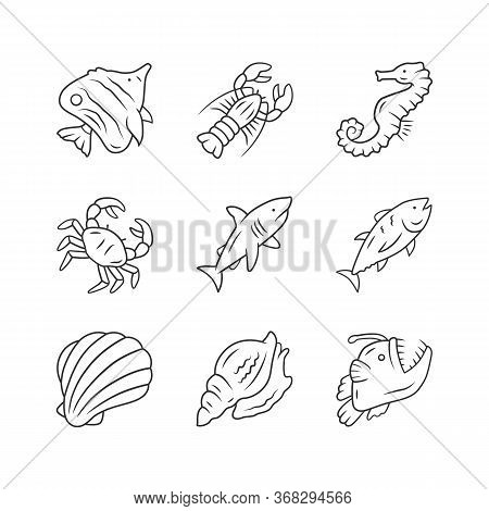Marine Animals Linear Icons Set. Swimming Shark, Anglerfish, Butterflyfish. Underwater Creature. Aqu