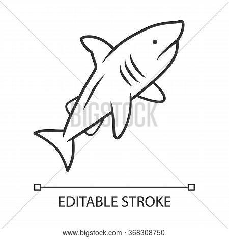 Shark Linear Icon. Dangerous Ocean Predator. Swimming Fish. Underwater Animal, Ocean Wildlife. Marin