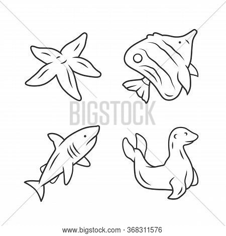 Sea Animals Linear Icons Set. Starfish, Butterflyfish, Shark, Seal. Ocean Wildlife. Fish Species. Un