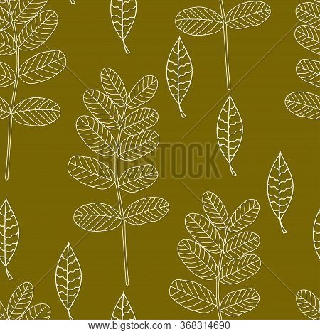 White Acacia Leaves Seamless Pattern On A Brown Background