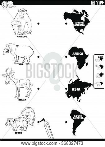 Black And White Cartoon Illustration Of Educational Matching Game For Kids With Animal Species Chara