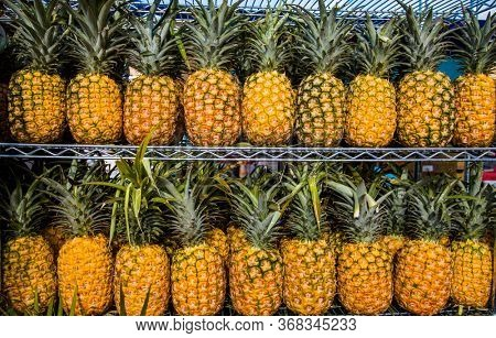 Close up view of Pineapples on shelves in market ready for sale. abstract Pineapple background.