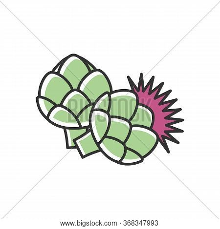Artichoke Rgb Color Icon. Fresh Vegetable To Cook Nutrient Recipe. Raw Vegetable For Healthy Dieting