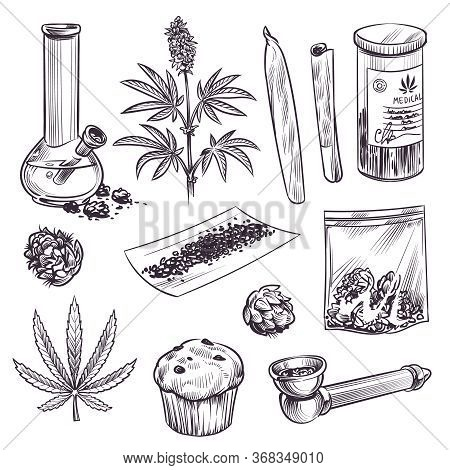 Sketch Cannabis. Cosmetic And Medical Plant Marijuana Leaves, Weed Joint And Bong. Cbd Oil, Vintage