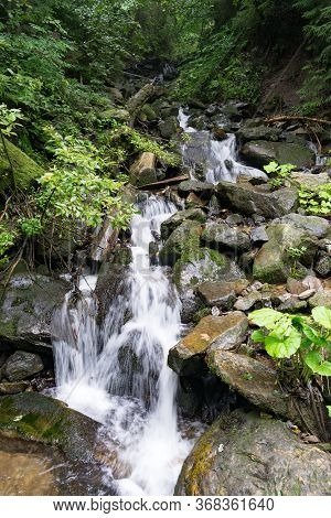 Brook Cascading In The Forest. Hiking In Carpathian Mountains.