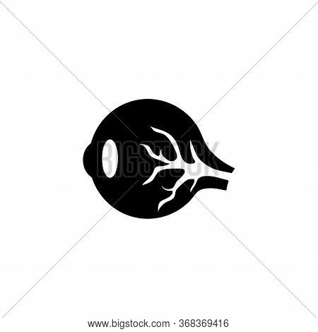 Extrinsic Muscles Eye, Human Eyeball. Flat Vector Icon Illustration. Simple Black Symbol On White Ba