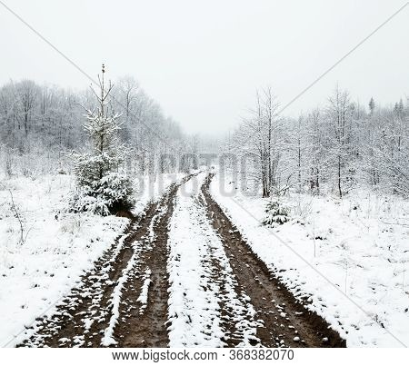 Dirt Road In Winter. Wheel Ruts Covered With Snow. Winter Landscape.