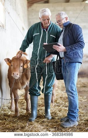 Breeder meeting with financial advisor in barn