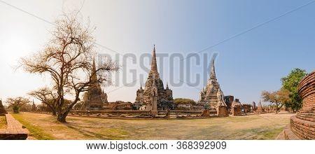 Panorama Of Ayutthaya Historical Park With Three Stone Stupas And A Tree In Ayuthaya, Thailand