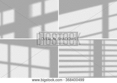 Shadow Overlay Effect. Set Of Transparent Overlay Shadow From The Window And Jalousie. Realistic Sof