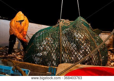 Fishermen lifted a trawl with fish aboard a ship in the Sea of Japan