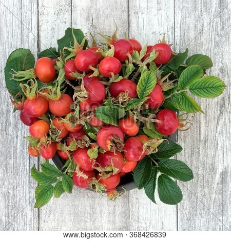 Rosehip berry fruit health food used in herbal medicine used in a cold & flu remedy drink, very high in vitamin c, anthocyanins, lycopene & antioxidants. On rustic wood background. Rosa rugosa.