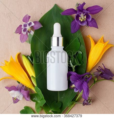 Anti Aging Serum In Glass Bottle With Dropper, Flowers And Plants On Paper Craft Background. Facial
