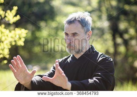 A Man Martial Artist And Qigong Master Practicing Tai Chi Taiji Chuan In A Park