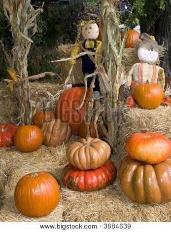 Halloween Pumpkins And Straw Dolls