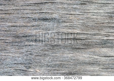 Plywood Weathered Gray Texture With Wood Fiber, Cracks And Stains Of Rot And Mould