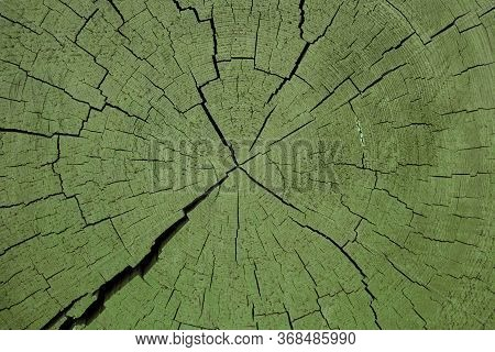 Image Of Wooden Stub Background Day Light