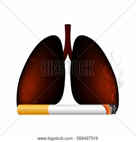 Stop Smoking, World No Tobacco Day. Smoking Is Harmful To Human Organs. Resulting In Organ Damage An