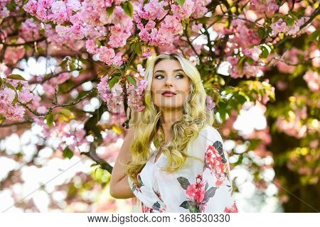 Floral Aroma. Harmony And Female Energy. Spring Blossoming Tree. Spring Symbol. Reasons Why Flowers