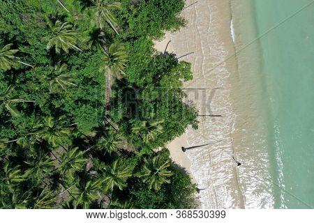 Aerial photo of palm trees, beach and coast