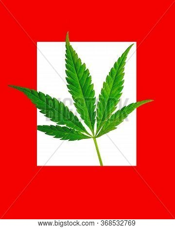 Cannabis Leaf In A Red Frame. Bright Background