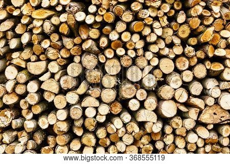 Woodpile Of Firewood. Wood Texture. Firewood Stacked In One Background.