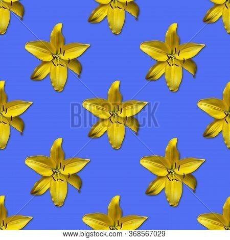 Repeating Seamless Pattern Of Yellow Flowers. Daylily Hemerocallis 'hyperion' On Blue Background. La