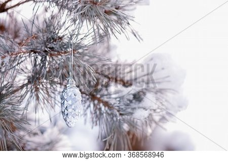 Pine Branch With Cones In Snow Stock Photo.snow-covered Christmas Tree Branch And Shiny Cones On The