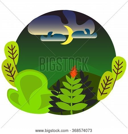 Fern Flat Style Illustration Of The Magic Night In Midsummer When The Fern Blooms Once A Year, The S