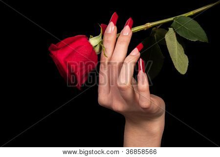 Human fingers with long fingernail and beautiful manicure