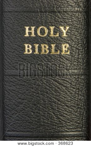 Holy Bible Spine