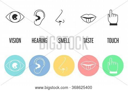 Five Senses Icon Set. Vector Isolated Illustration