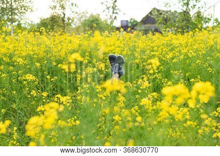 Female Legs In Gray Sneakers Sticking Out Of Rape Flowers Field. Legs Against The Background Of Yell