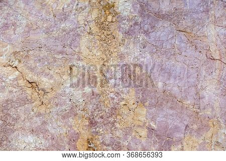 Natural Stone Surface Of Purple-yellow Colorful Ammonite Slab Of Verona, High Resolution
