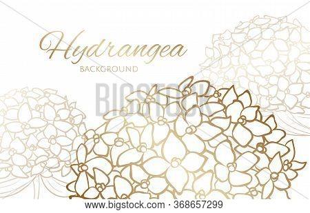 Background With Golden Outline Hydrangea, Clip Art