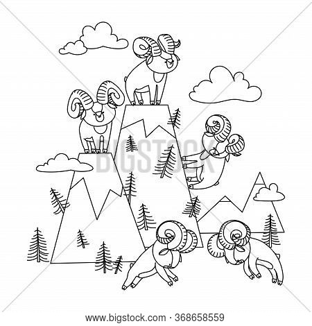 Mountain Landscape With Set Of Young Cute Horned Argali Males Who Staged A Tournament, Vector Illust