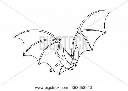 Cute Long-eared Bat, Bloodsucker, Symbol Of Vampire, Midnight & Halloween Holiday, Witches` Pet, Vec