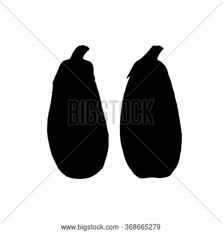 Botanical Vector Silhouette Watercolor Illustration Of Blue Eggplant Aubergine Whole And Cut On Whit