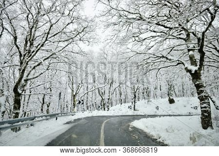 road mountains crosses forest snow covered of Nebrodi Mountains in Sicily nature landmark landscape