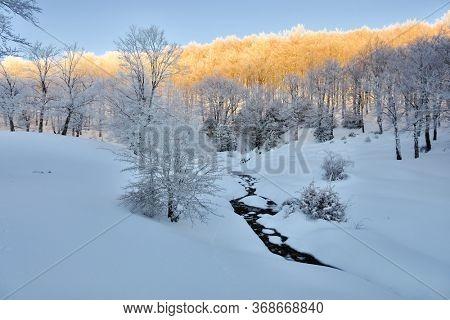 sunrise on forest snow covered in Nebrodi Mountains Of Sicily nature landmark landscape