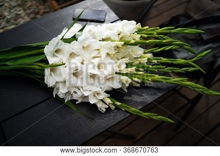Flat Lay Composition With Beautiful Gladiolus Flowers On Dark Background. Pattern Of Gladiolus With