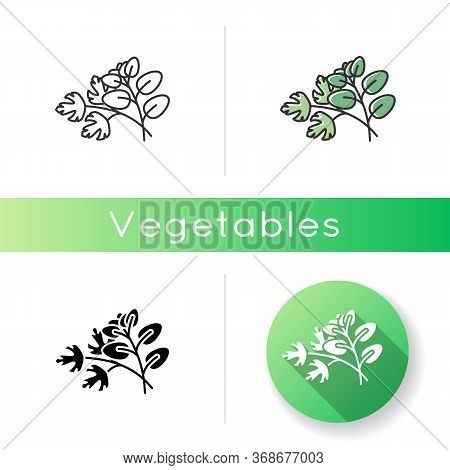 Fresh Herbs Icon. Scented Fresh Vegetable. Italian Nutrient Condiment. Plant Sprout. Dressing For Fl