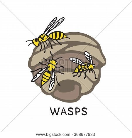 Wasps And Wasp Nest Isolated On White Background. A Stinging Insect. Hand Drawn Style. Design Elemen