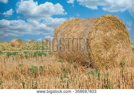 Straw Bale, Straw Rolls On Farmer Field In The Summer