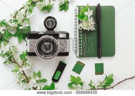 Flatlay Camera, Notebook, Pen, Memory Cards, Spring Twigs Flowering Tree