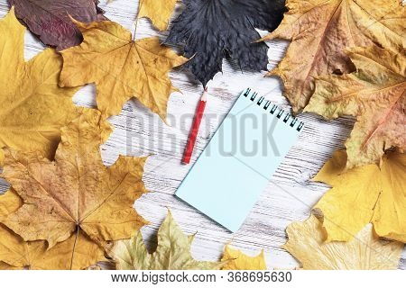 Spiral Notepad And Pen Lies On Vintage Wooden Desk With Bright Autumn Foliage. Business And Educatio