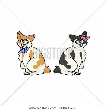 Cute Cartoon Japanese Bobtail Boy And Girl Kitten Vector Clipart. Pedigree Kitty Breed For Cat Lover