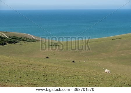 A View On The South Downs Looking Towards The Sea Near Eastbourne, Sussex.