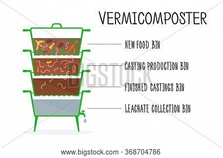 Vector Illustration Of Vermicomposter Structure. Concept Of Recycling, Zero Waste. Worms Compost Des