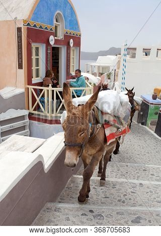 Oia, Santorini, Greece - March 5, 2018: Donkeys Carrying Cargo In Front Of The Street Cafe On Santor